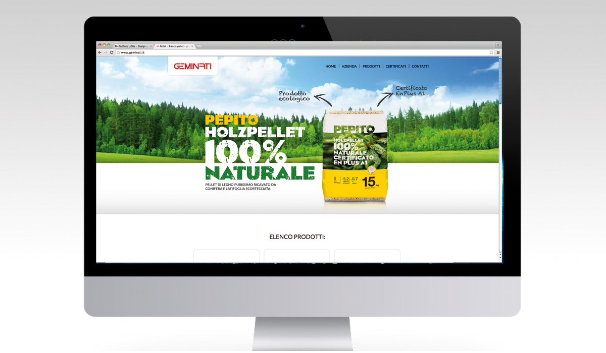 Geminati Web design